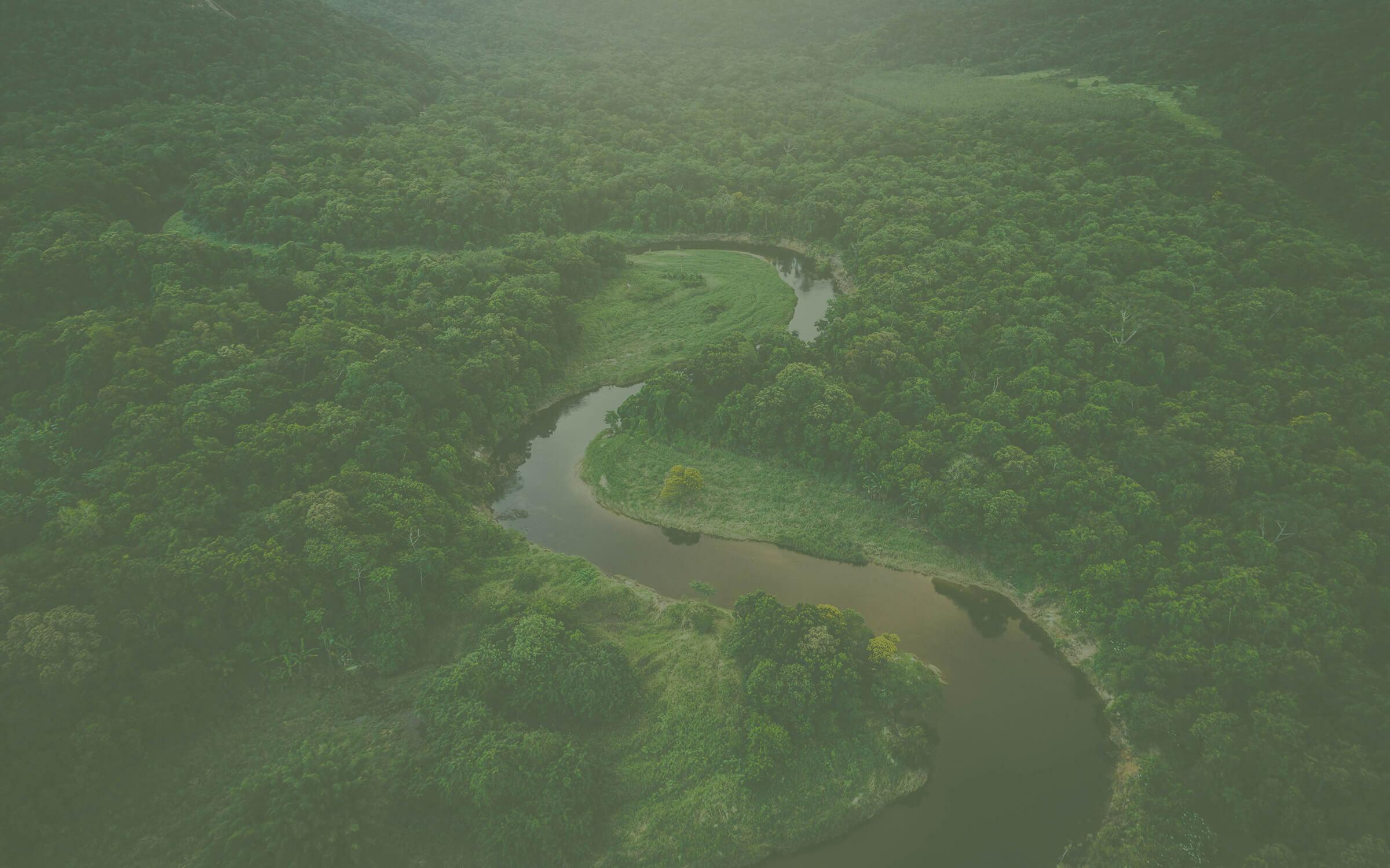 Amazonia winding river