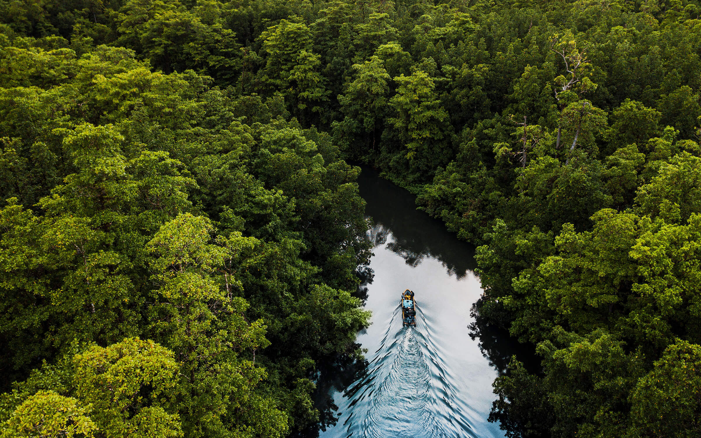 Aerial view of a boat on a river cutting through the jungle