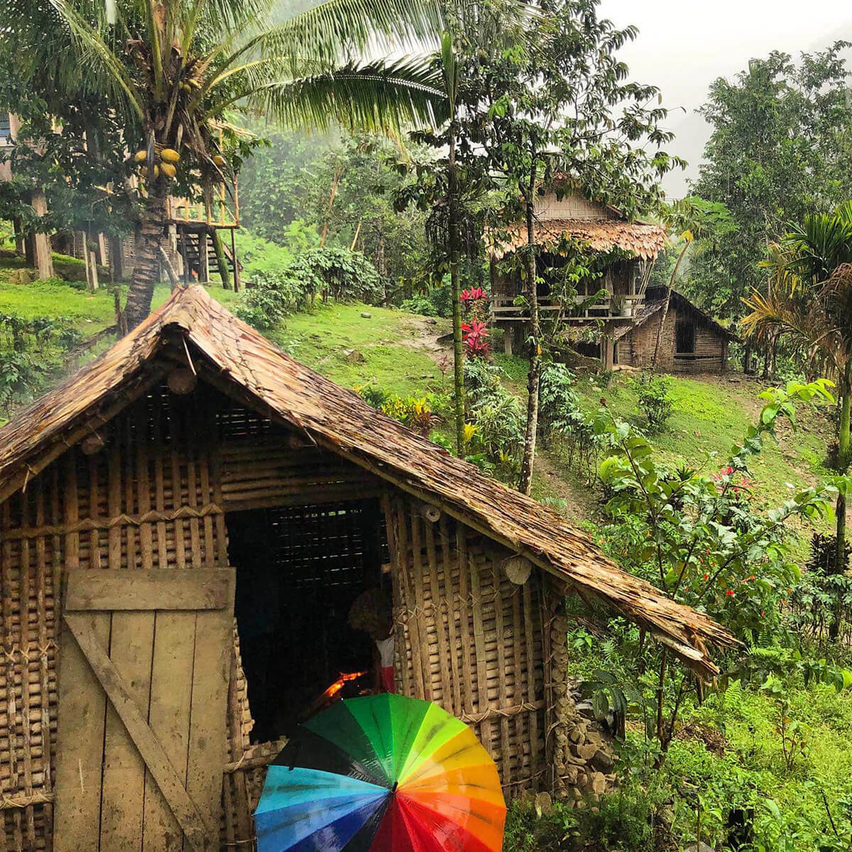 A woven hut with a rainbow umbrella stands in a jungle with two more huts in the background