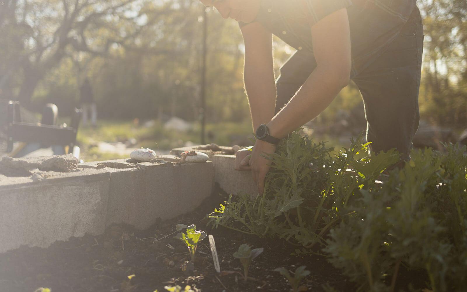 A man stacks blocks making wall around a garden