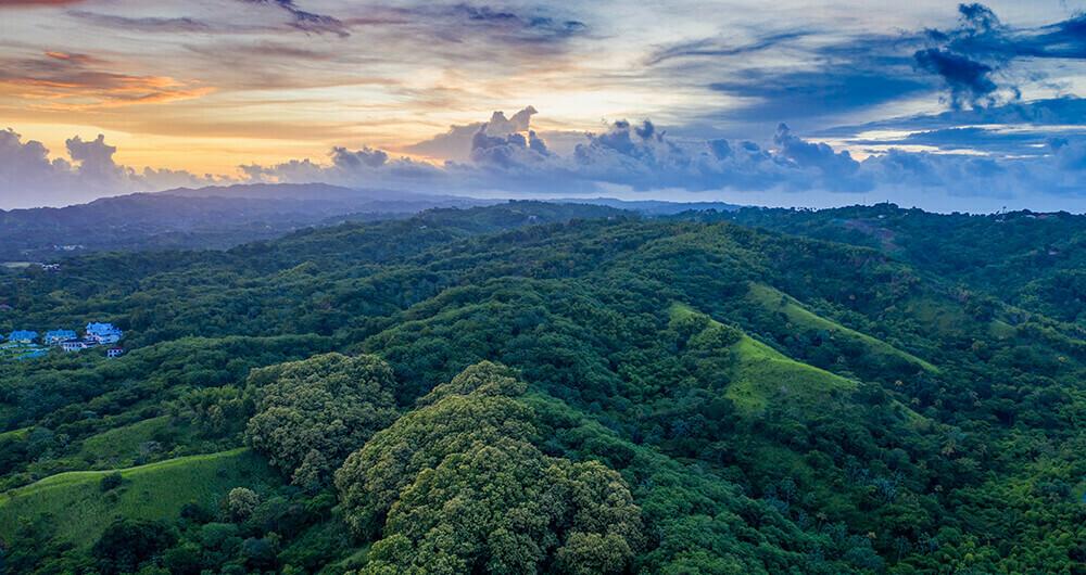 Green rolling hills below colorful sky
